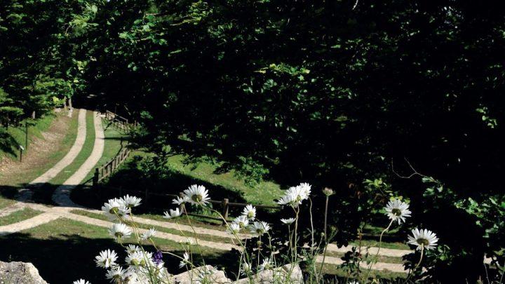 Riapertura Giardino della Flora Appenninica – 1 Maggio 2018